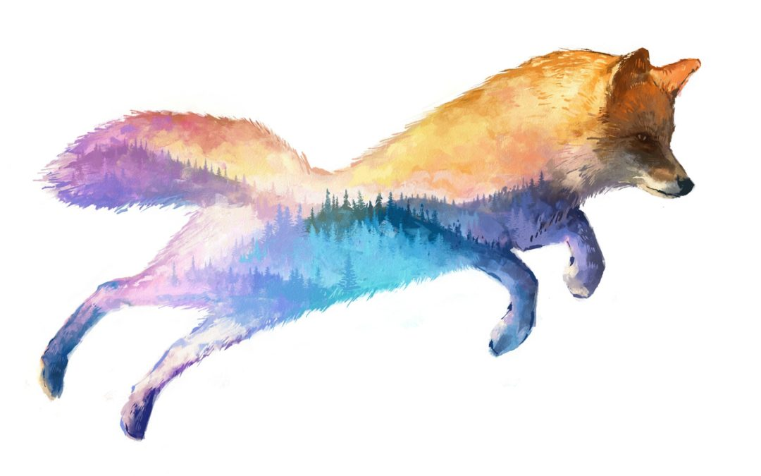 Unique Fox Gifts That Will Make You Say For Fox Sake