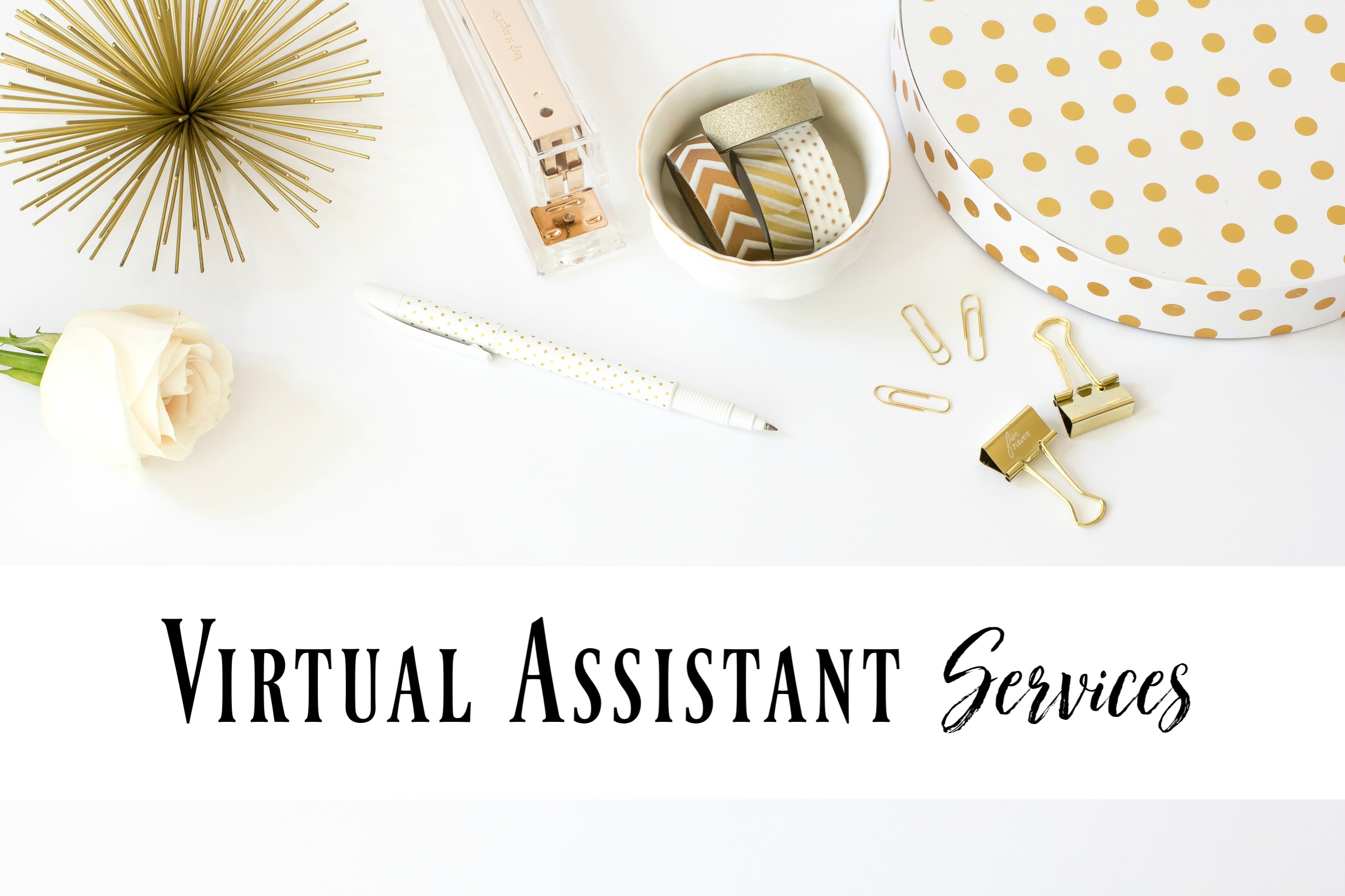 Liquid Script Virtual Assistant - Thistle Hill